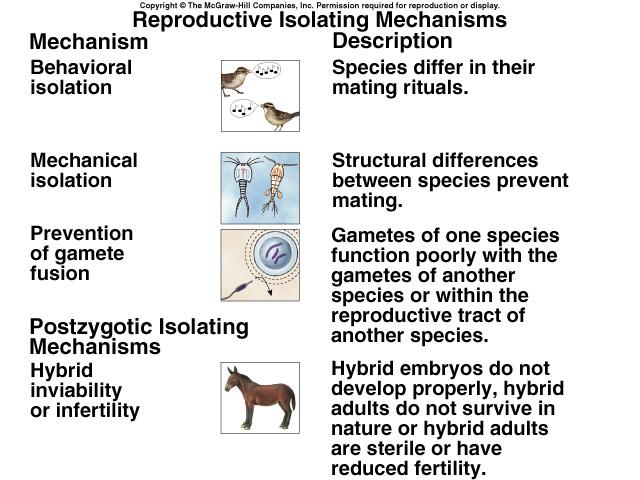 Reproductive Isolation Pictures Origin of Speci...