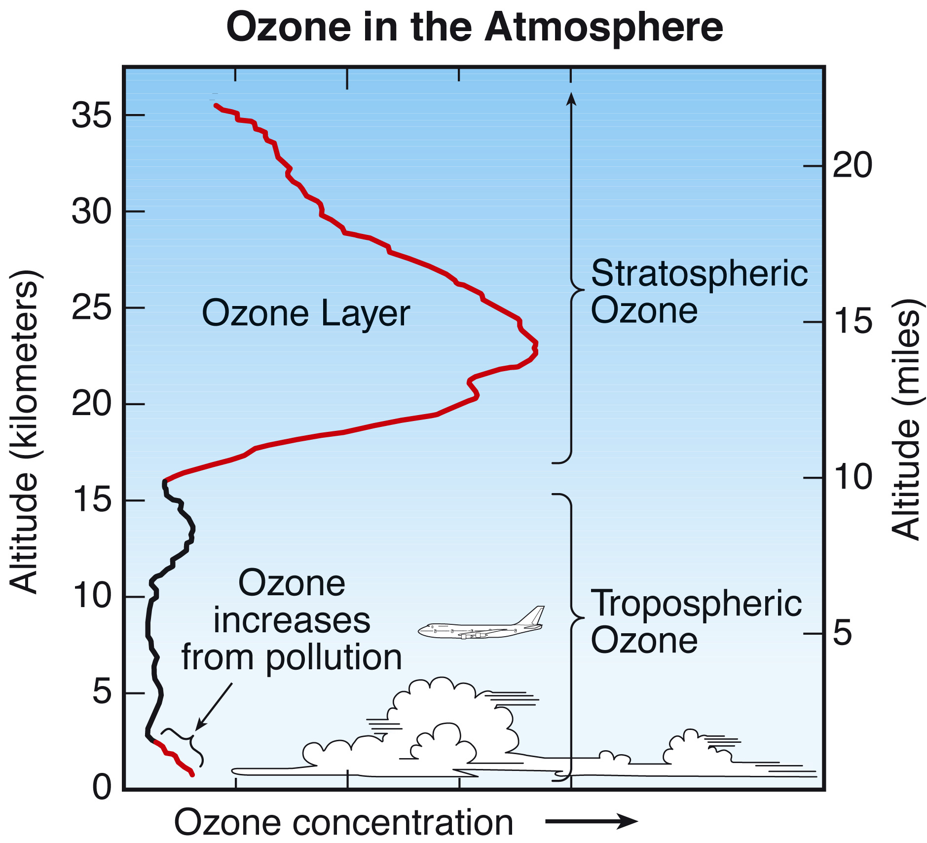 an analysis of ozone layer Immediately download the ozone depletion summary, chapter-by-chapter analysis, book notes, essays, quotes, character descriptions, lesson plans, and more - everything.